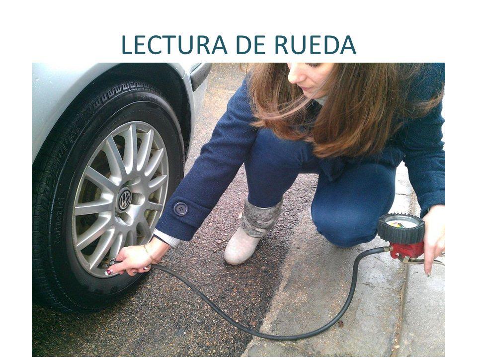 LECTURA DE RUEDA