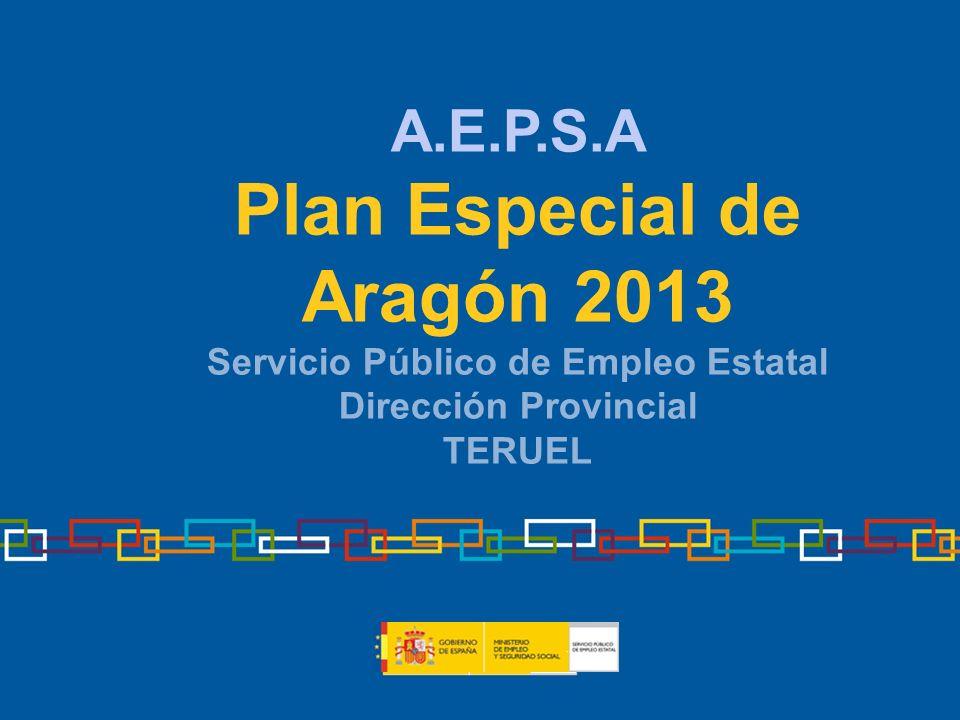 Plan Especial de Aragón 2013 Servicio Público de Empleo Estatal