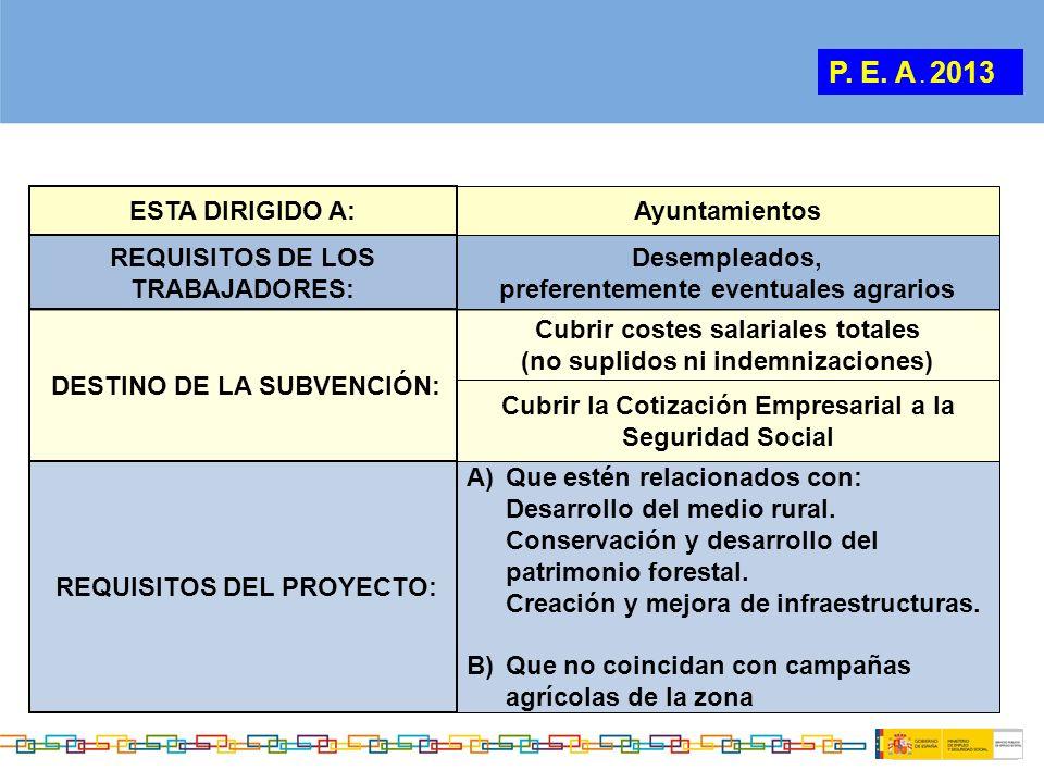 P. E. A . 2013 ESTA DIRIGIDO A: Ayuntamientos
