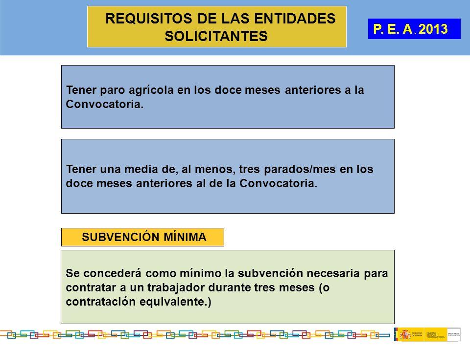 REQUISITOS DE LAS ENTIDADES SOLICITANTES