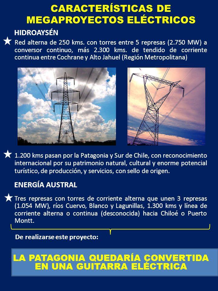 CARACTERÍSTICAS DE MEGAPROYECTOS ELÉCTRICOS