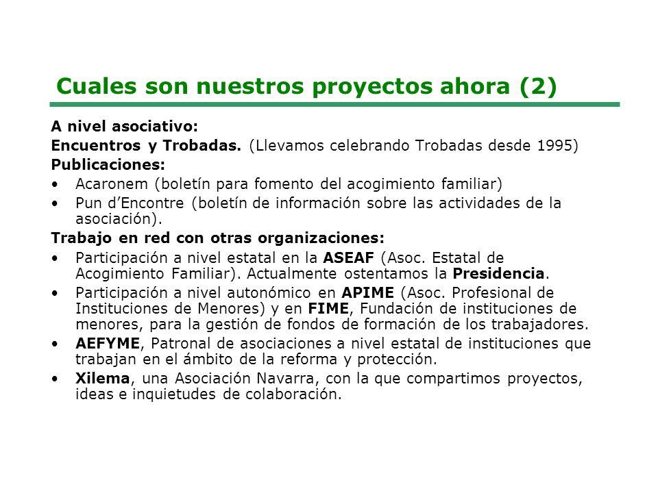 Cuales son nuestros proyectos ahora (2)
