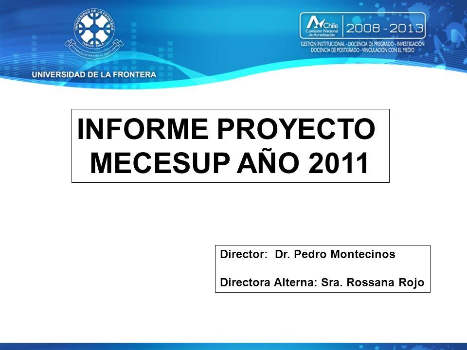 INFORME PROYECTO MECESUP AÑO 2011