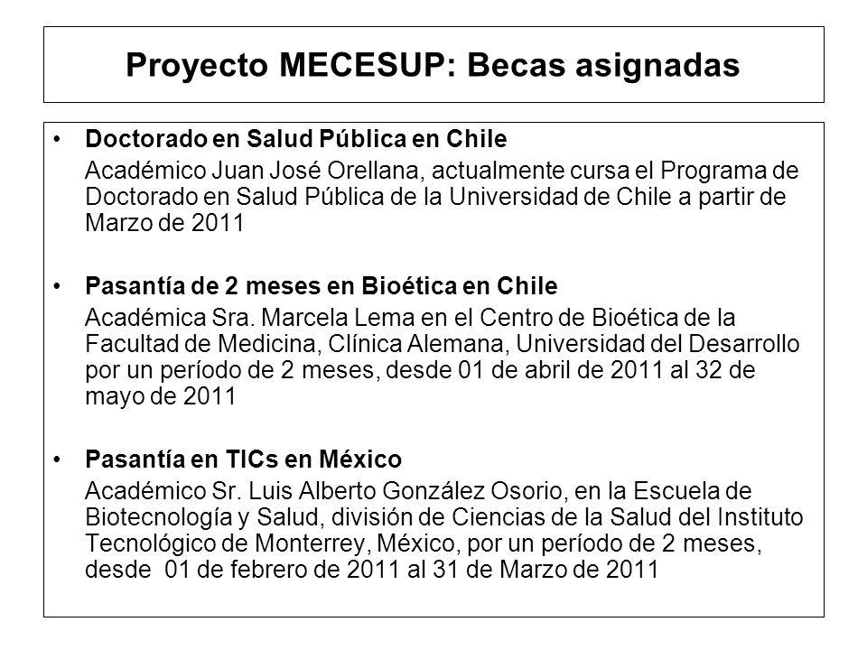 Proyecto MECESUP: Becas asignadas