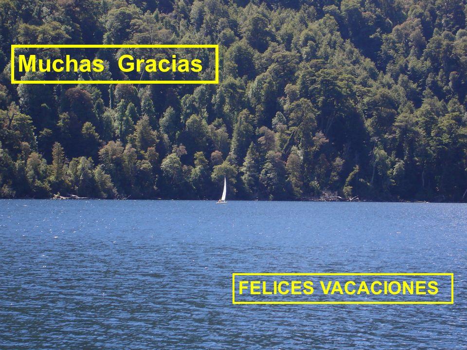 Muchas Gracias FELICES VACACIONES