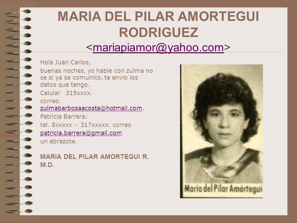 MARIA DEL PILAR AMORTEGUI RODRIGUEZ <mariapiamor@yahoo.com>