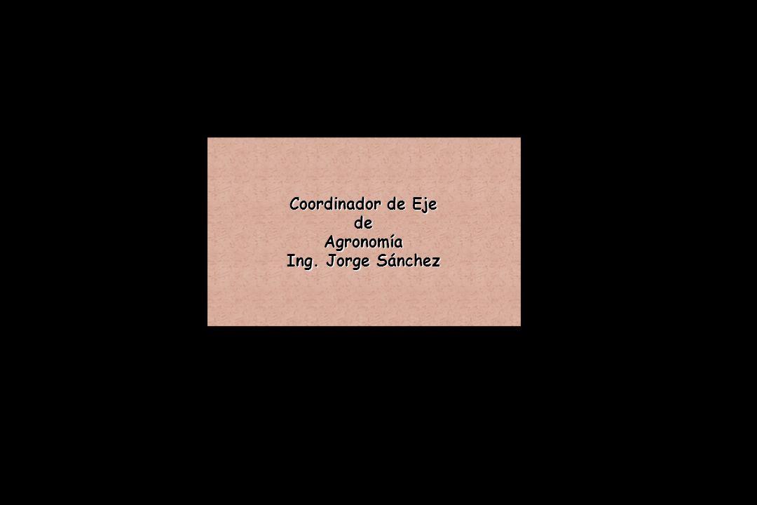 Coordinador de Eje de Agronomía Ing. Jorge Sánchez