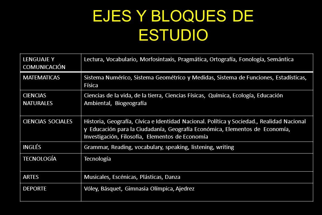 EJES Y BLOQUES DE ESTUDIO