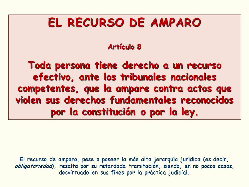 EL RECURSO DE AMPARO Artículo 8.