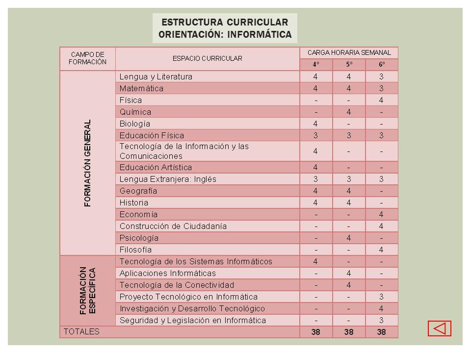 ESTRUCTURA CURRICULAR ORIENTACIÓN: INFORMÁTICA