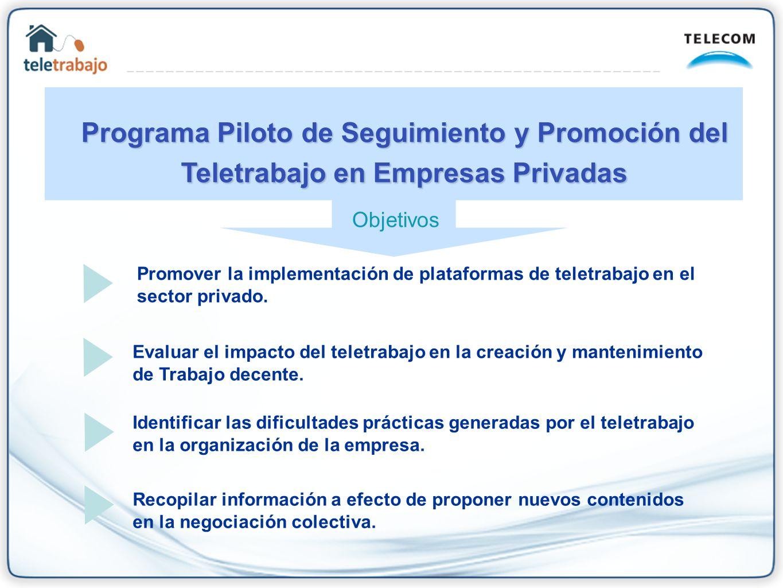 Programa Piloto de Seguimiento y Promoción del Teletrabajo en Empresas Privadas