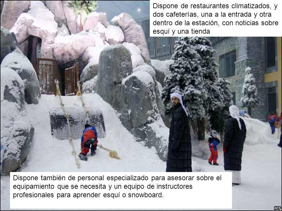Dispone de restaurantes climatizados, y dos cafeterías, una a la entrada y otra dentro de la estación, con noticias sobre esquí y una tienda