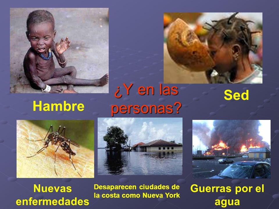 ¿Y en las personas Sed Hambre Nuevas enfermedades Guerras por el agua