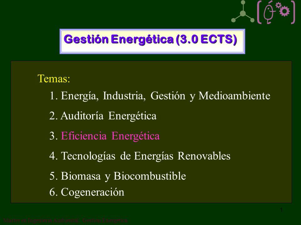 Gestión Energética (3.0 ECTS)