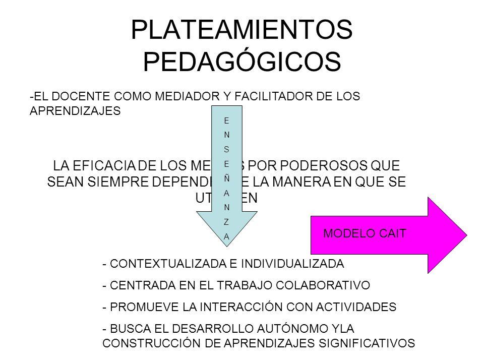 PLATEAMIENTOS PEDAGÓGICOS