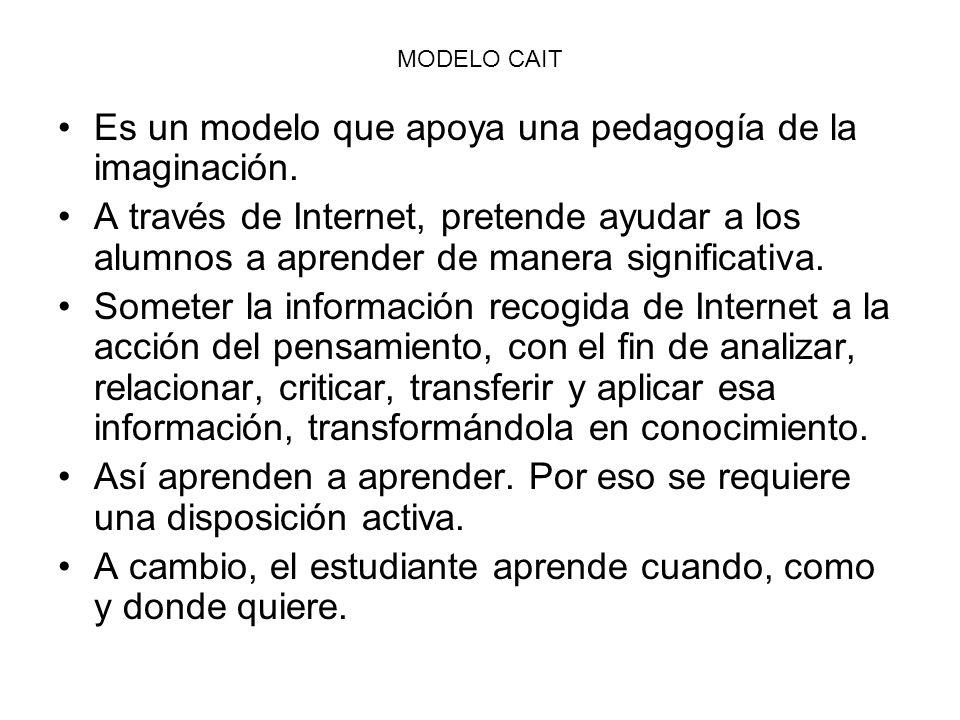 Es un modelo que apoya una pedagogía de la imaginación.