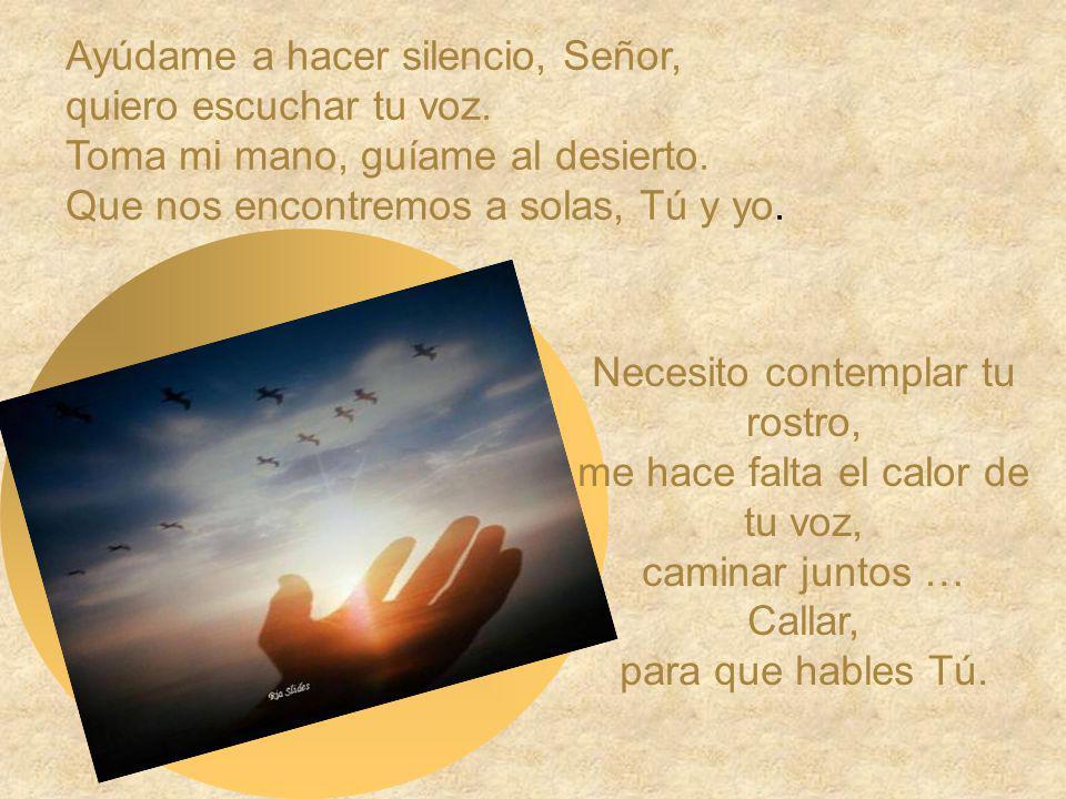Ayúdame a hacer silencio, Señor, quiero escuchar tu voz.