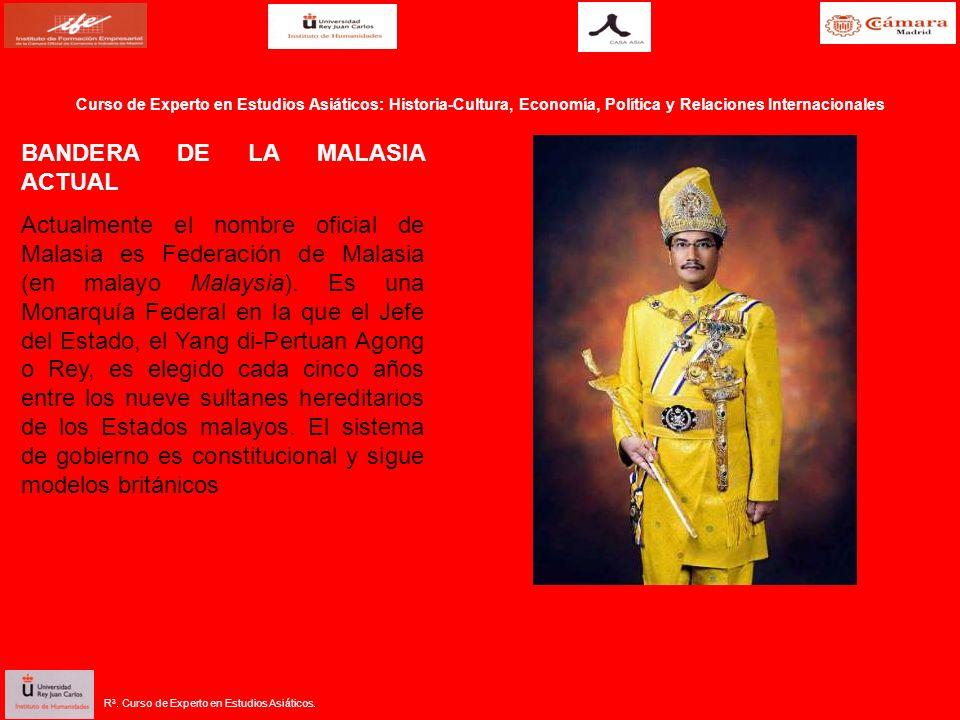 BANDERA DE LA MALASIA ACTUAL