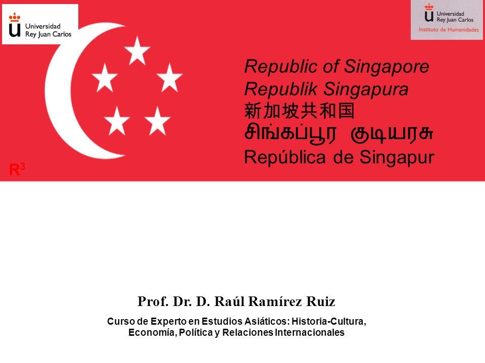 Prof. Dr. D. Raúl Ramírez Ruiz