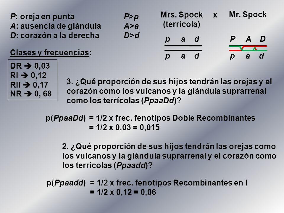 Mrs. Spock (terrícola) x. Mr. Spock. P: oreja en punta P>p. A: ausencia de glándula A>a. D: corazón a la derecha D>d.