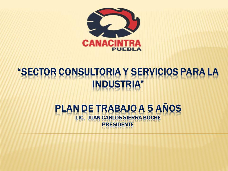 SECTOR CONSULTORIA Y SERVICIOS PARA LA INDUSTRIA PLAN DE TRABAJO A 5 AÑOS LIC.