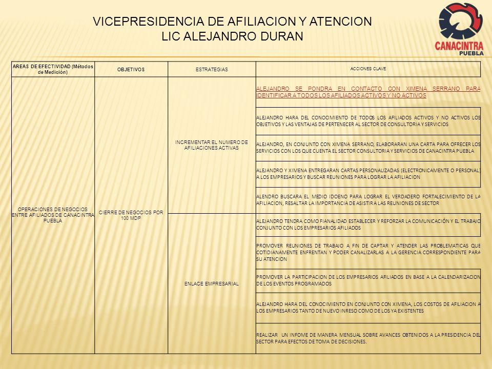 AREAS DE EFECTIVIDAD (Métodos de Medición)