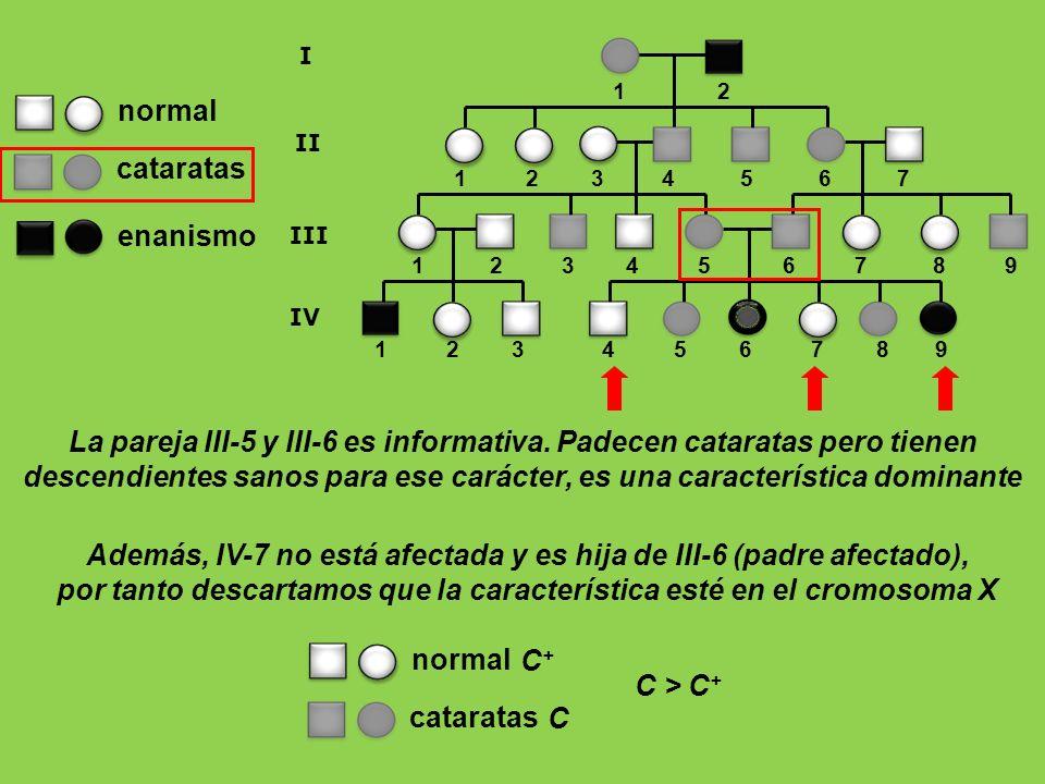 Además, IV-7 no está afectada y es hija de III-6 (padre afectado),