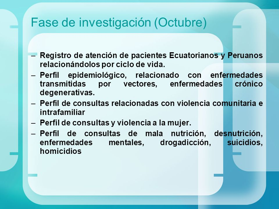 Fase de investigación (Octubre)