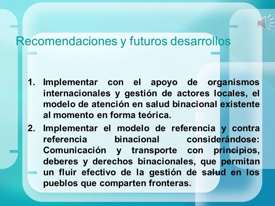 Recomendaciones y futuros desarrollos