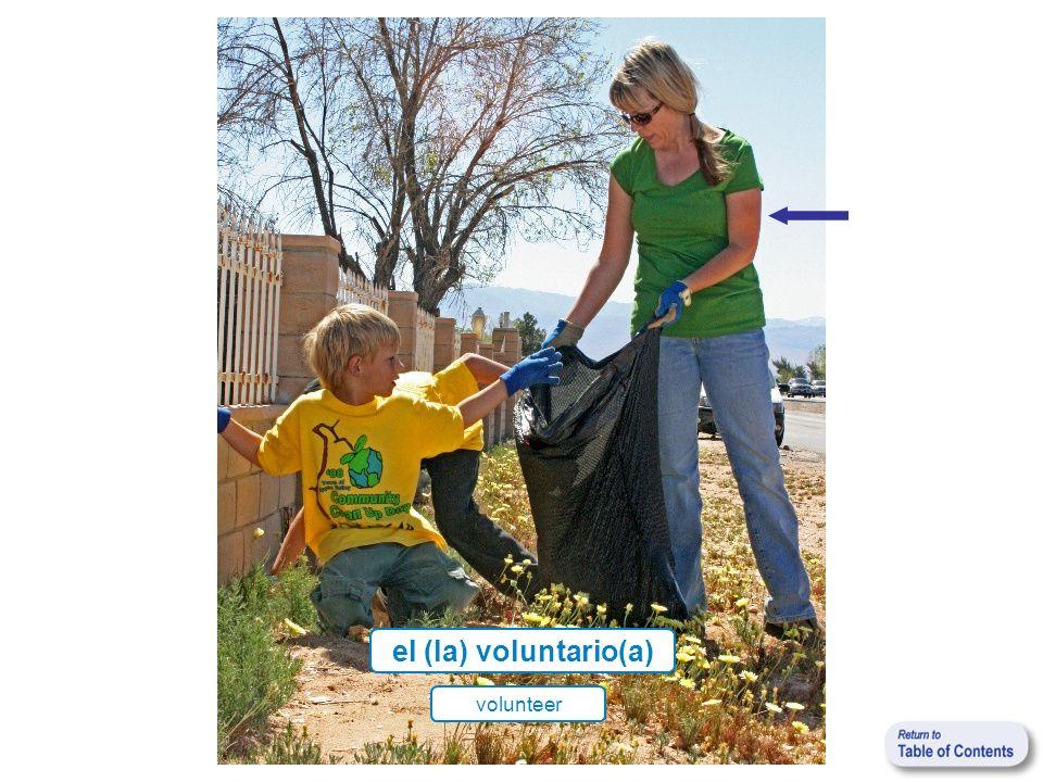 el (la) voluntario(a) volunteer