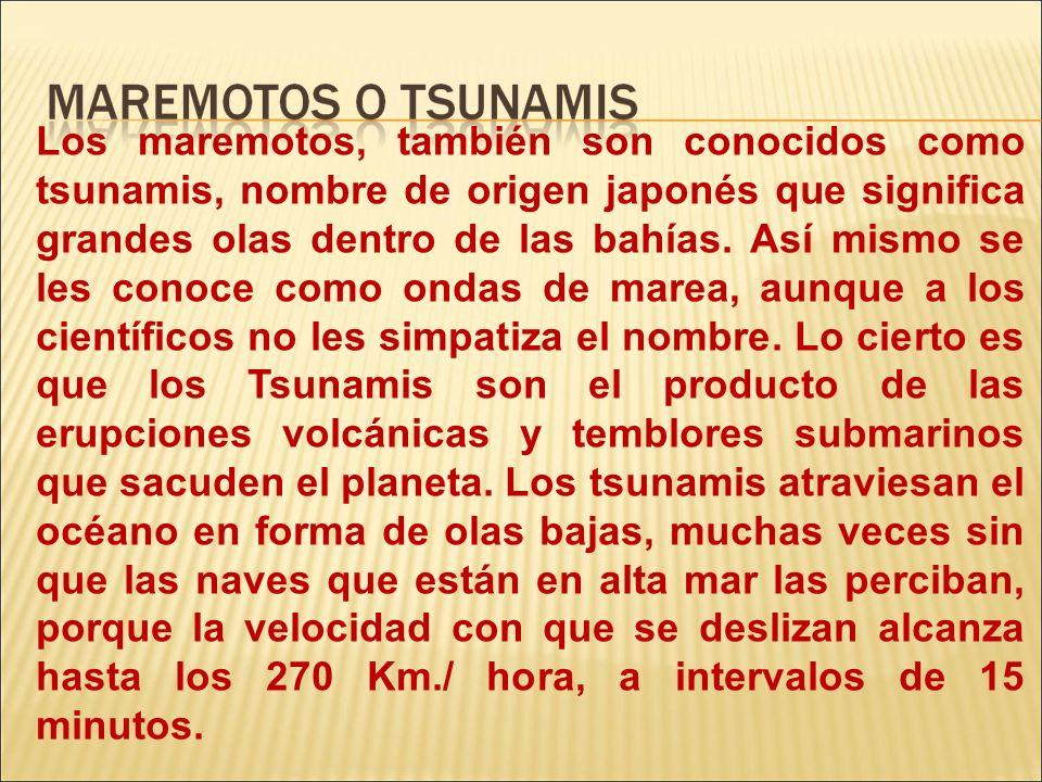 Los maremotos, también son conocidos como tsunamis, nombre de origen japonés que significa grandes olas dentro de las bahías.