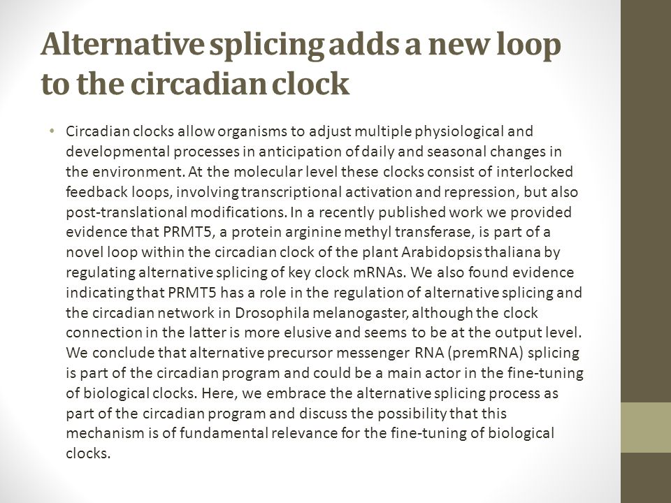 Alternative splicing adds a new loop to the circadian clock