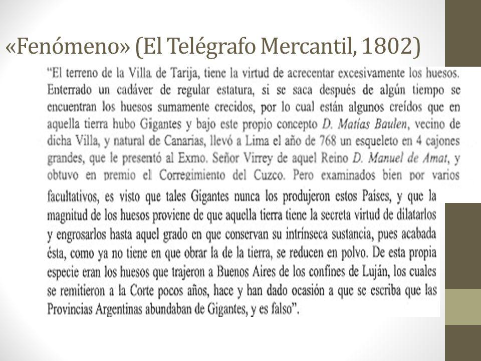 «Fenómeno» (El Telégrafo Mercantil, 1802)