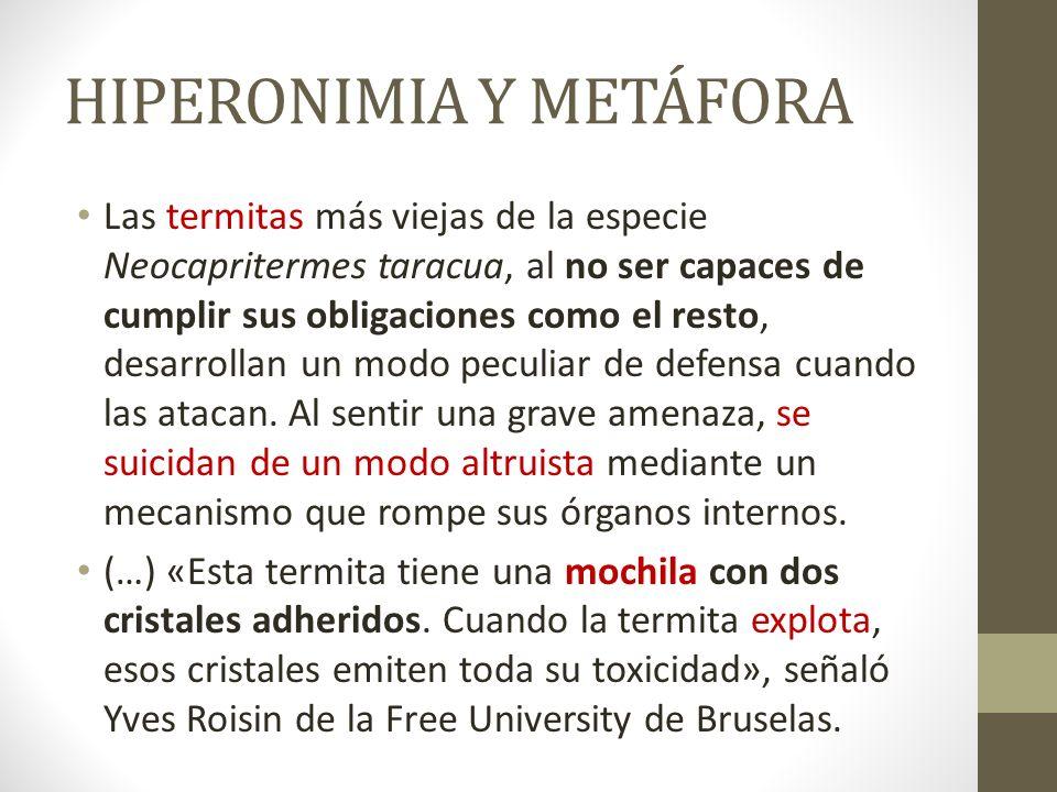 HIPERONIMIA Y METÁFORA