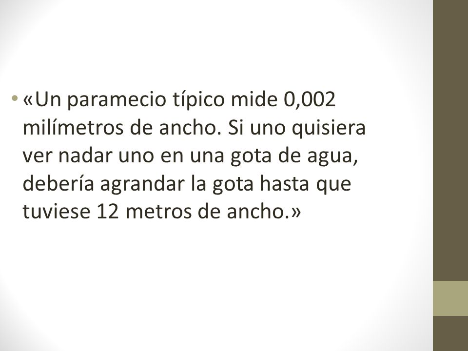 «Un paramecio típico mide 0,002 milímetros de ancho