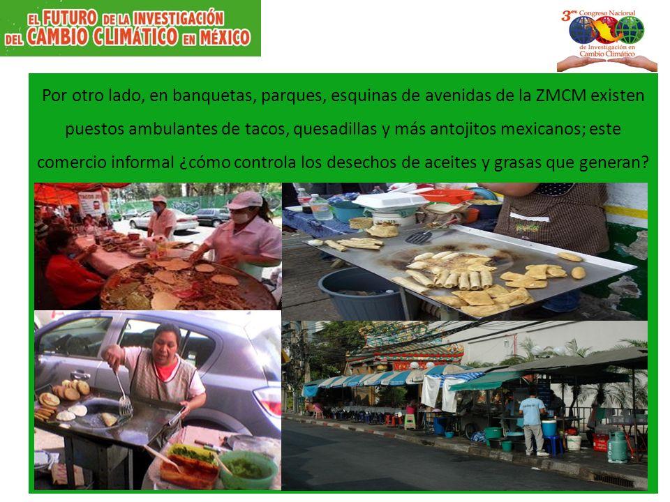 Por otro lado, en banquetas, parques, esquinas de avenidas de la ZMCM existen puestos ambulantes de tacos, quesadillas y más antojitos mexicanos; este comercio informal ¿cómo controla los desechos de aceites y grasas que generan