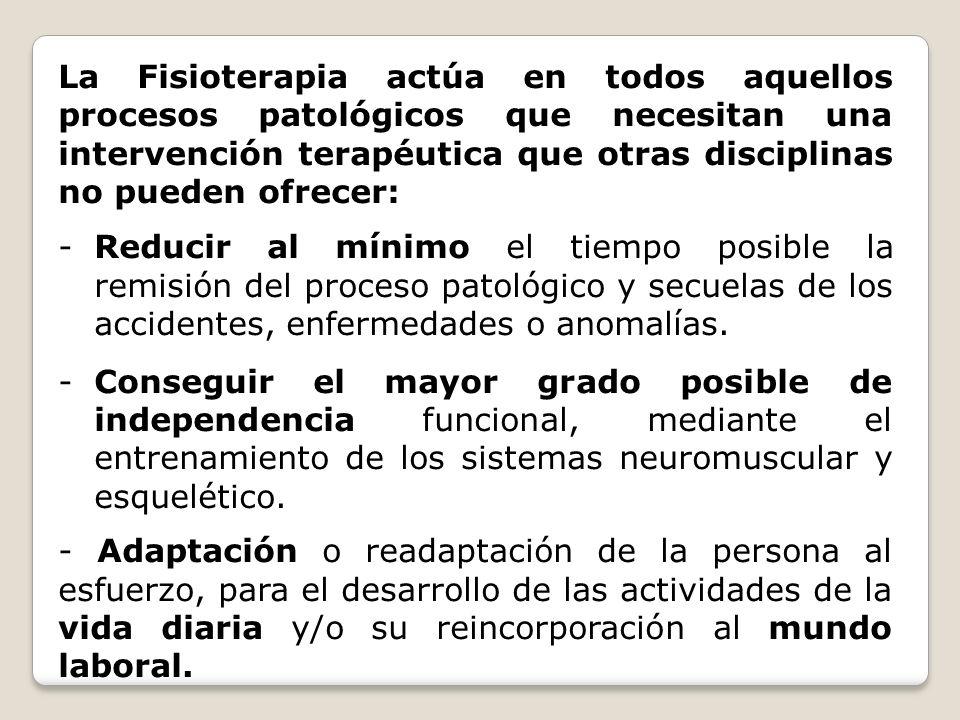 La Fisioterapia actúa en todos aquellos procesos patológicos que necesitan una intervención terapéutica que otras disciplinas no pueden ofrecer: