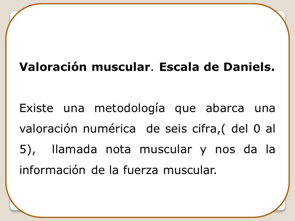 Valoración muscular. Escala de Daniels.