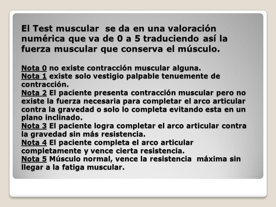 El Test muscular se da en una valoración numérica que va de 0 a 5 traduciendo así la fuerza muscular que conserva el músculo.