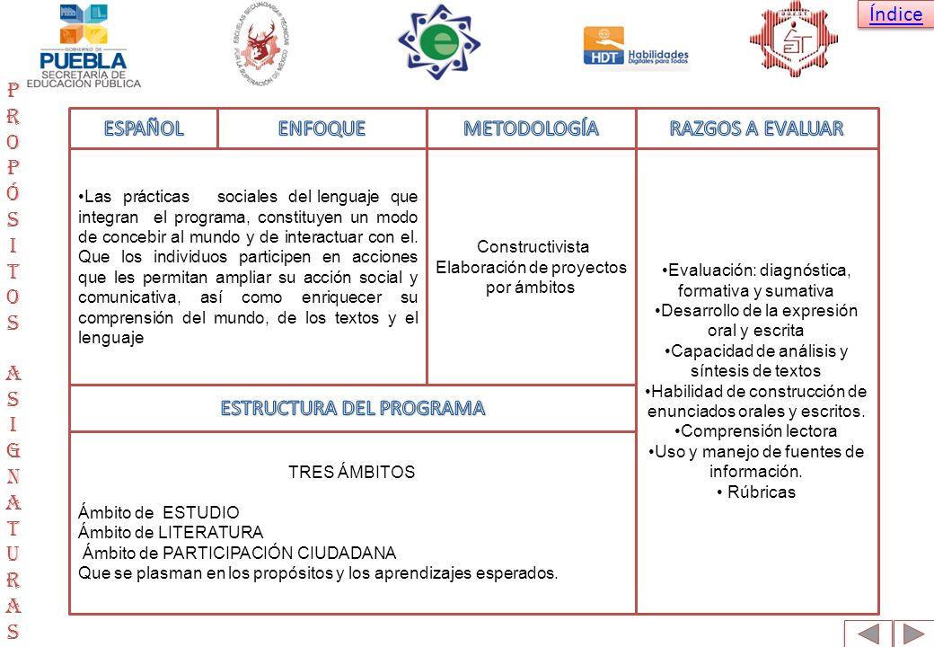 ESTRUCTURA DEL PROGRAMA Propósitos