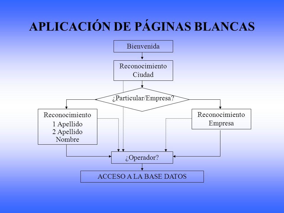 APLICACIÓN DE PÁGINAS BLANCAS