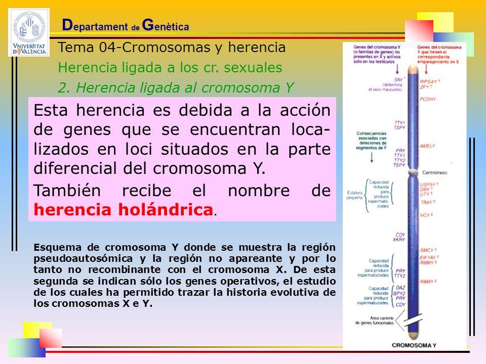 Departament de Genètica