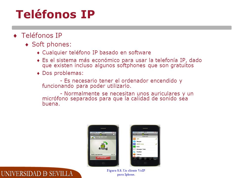 Figura 8.8. Un cliente VoIP para Iphone.