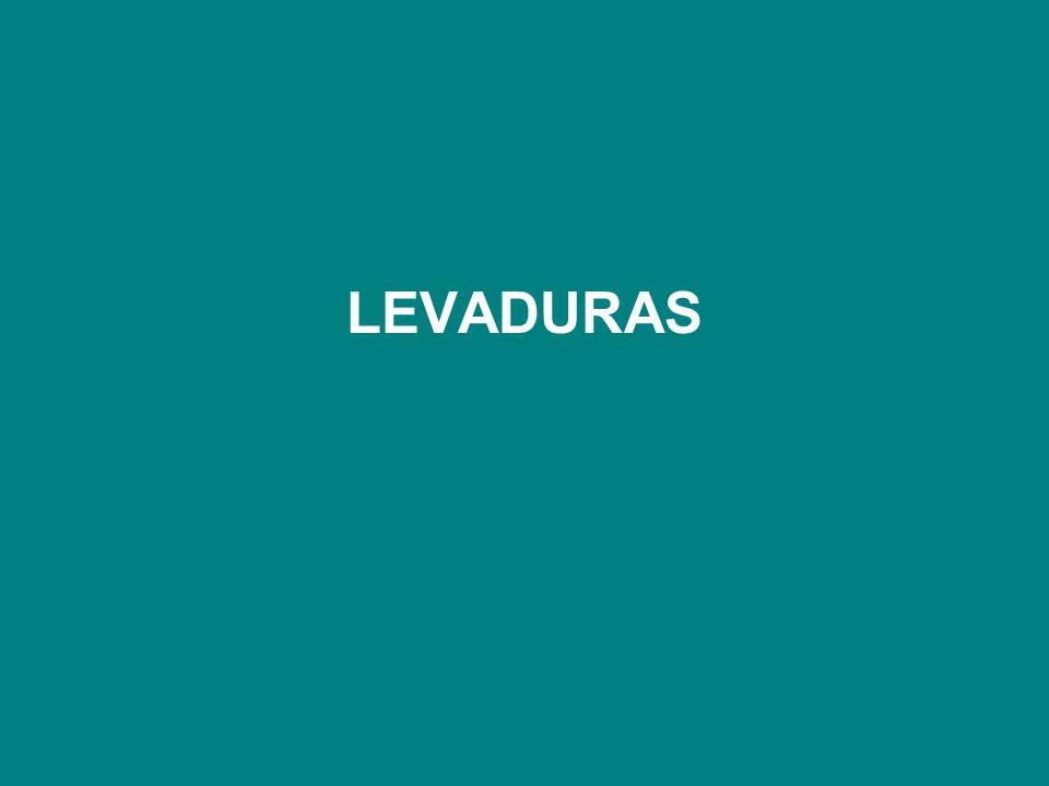 LEVADURAS
