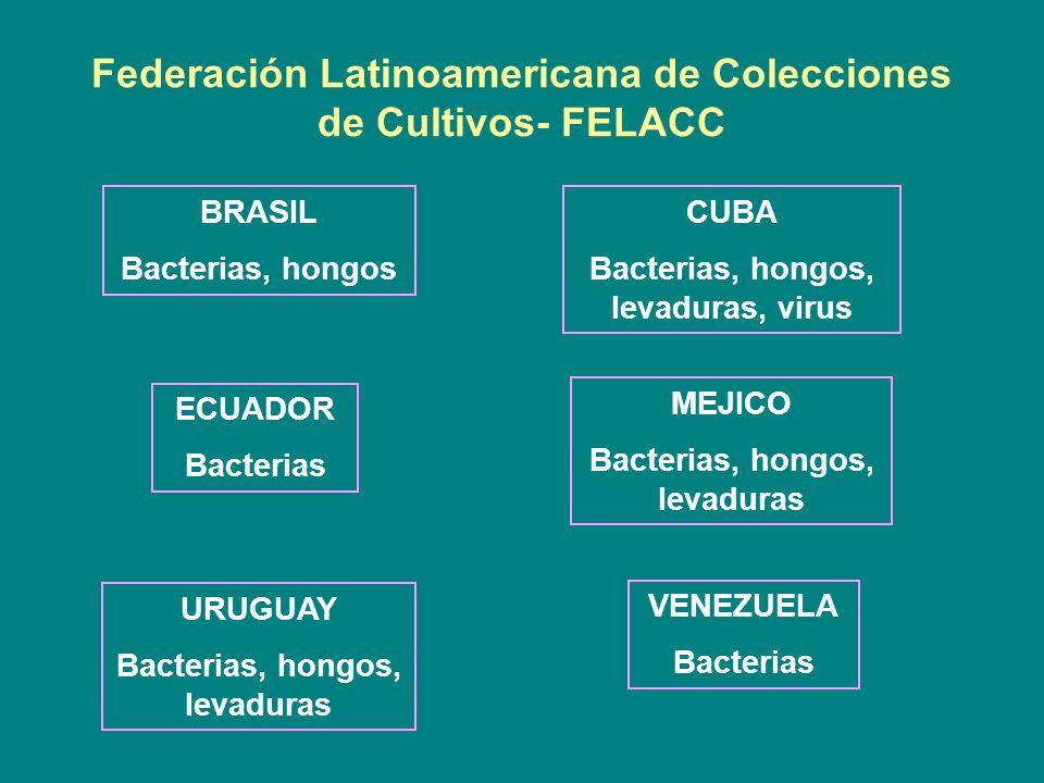 Federación Latinoamericana de Colecciones de Cultivos- FELACC