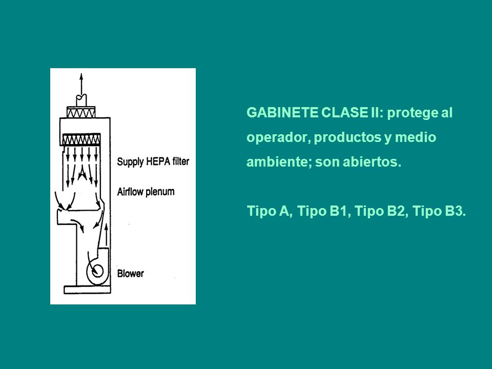 GABINETE CLASE II: protege al