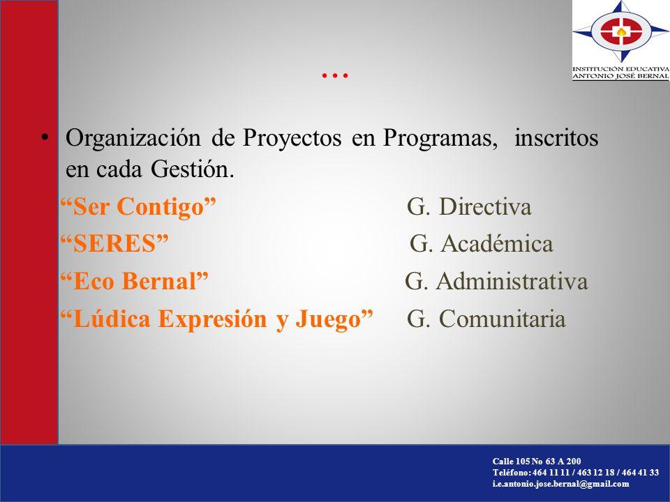 ... Organización de Proyectos en Programas, inscritos en cada Gestión.