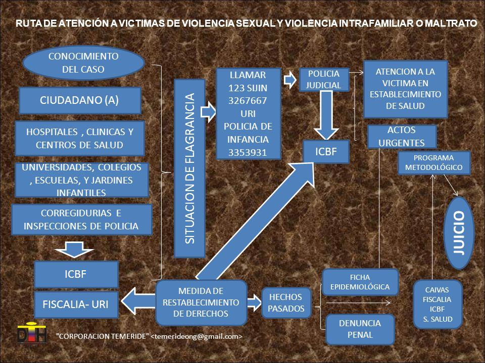 JUICIO SITUACION DE FLAGRANCIA CIUDADANO (A) ICBF ICBF FISCALIA- URI