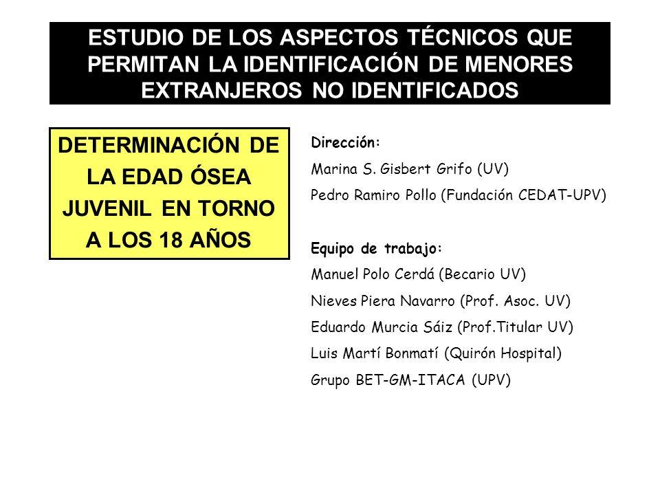 ESTUDIO DE LOS ASPECTOS TÉCNICOS QUE PERMITAN LA IDENTIFICACIÓN DE MENORES EXTRANJEROS NO IDENTIFICADOS