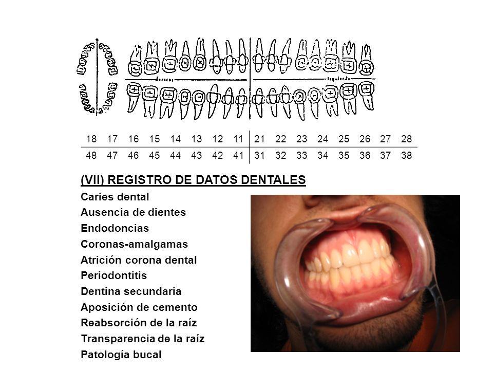 (VII) REGISTRO DE DATOS DENTALES